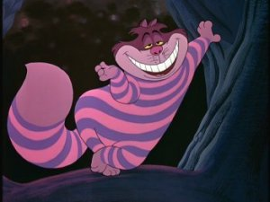 Pink, purple, stripey and a lil bit sleazy. Miow!